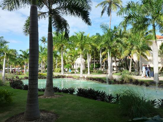 Dreams Palm Beach Punta Cana : garden