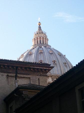 Vatican Gardens : Vista basílica Sn Pedro desde jardín vaticano