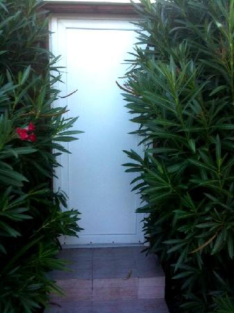 Le Patio 34: Overgrown bushes by the front door to the room