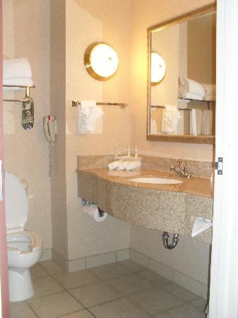 Holiday Inn Express South: neat bathroom