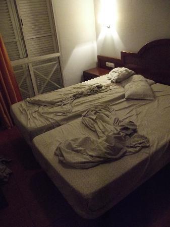 Apartamentos Dorotea: room 2