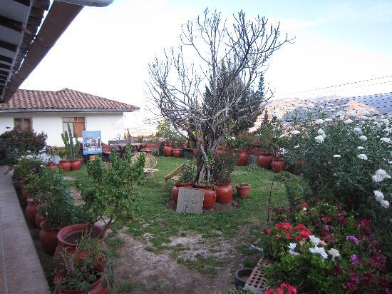 Encantada Casa Boutique Spa : Front patio of hotel
