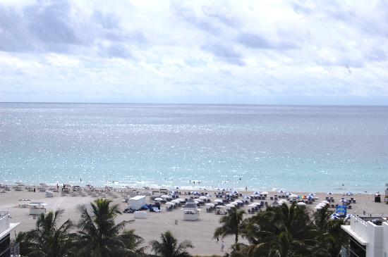 The Ritz-Carlton, South Beach: View From our Suite