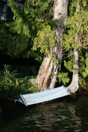 Long Lake Waterfront B&B: Hammock over lake