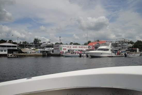 Photo of Sea Hag Marina and Cottages Steinhatchee