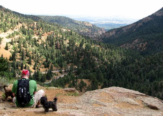North Cheyenne Canon Park and Starsmore Discovery Center: Mid way up the mountain towards the water fall
