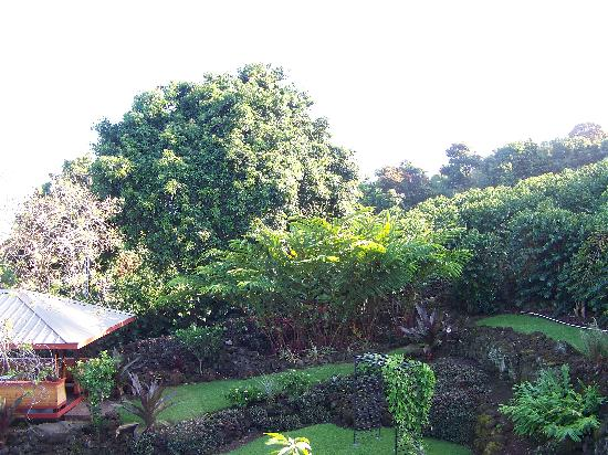 Holualoa Inn: View from balcony with Hale Luana (Massage Area) in lower left.