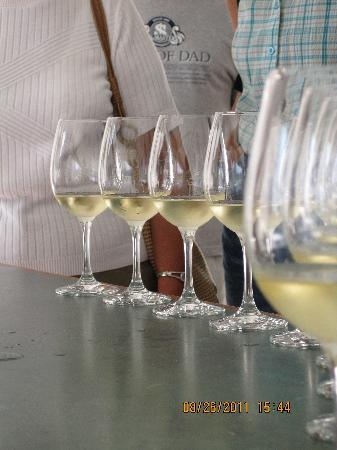 Paris Guest House: tasting great wines!!!