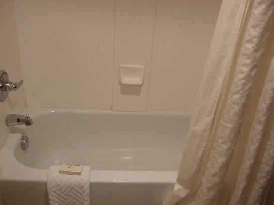 Hilton Cincinnati Airport: Clean Bath Tub