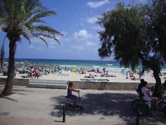 Biniamar: Beach Pic