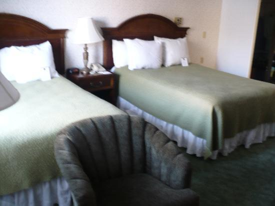 Best Western Plus Encina Lodge & Suites: Our room