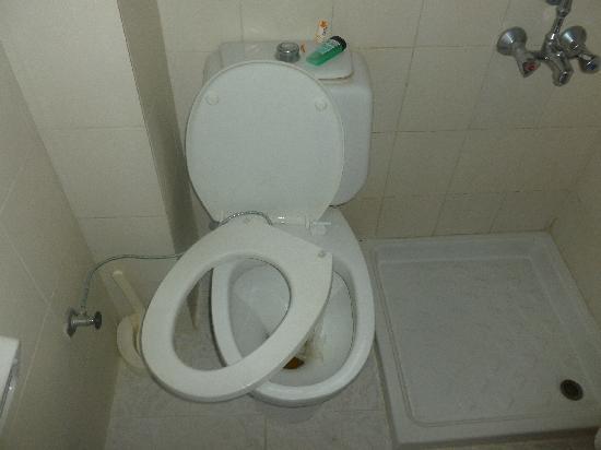 Princess Kinli: that dreaded toilet seat