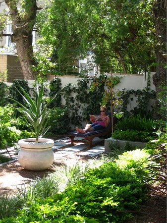 Conifer Cape: Relax in the garden