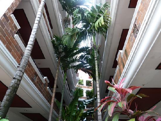 โรงแรมระมิง ลอดจ์: Street view.