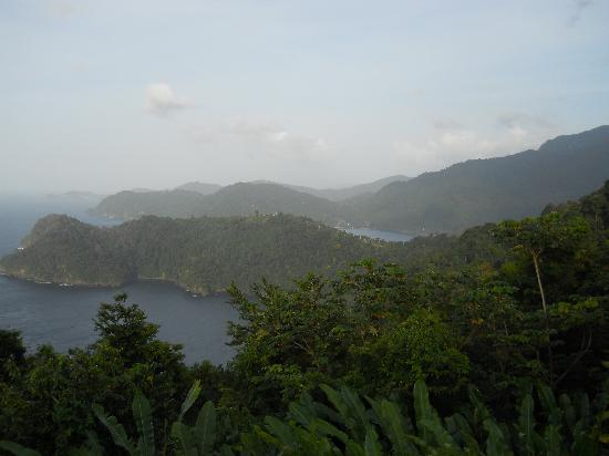 Maracas Bay from above