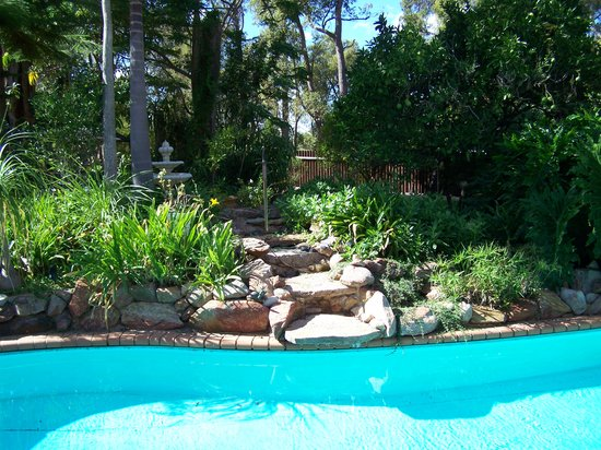 Carmelot Bed & Breakfast: Relax around our lagoon pool