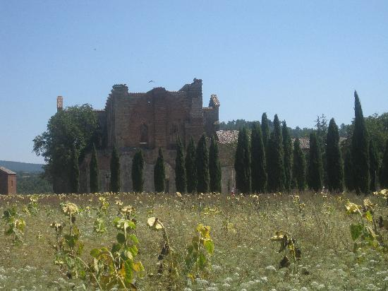 Abbazia di San Galgano: View in front of San Galgano