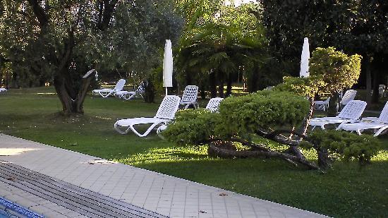 Hotel Grand Torino: parco e piscina1