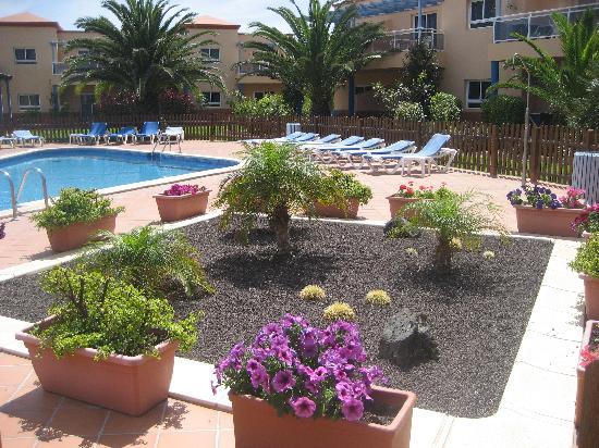 Apartamentos Miralobos: Piscina