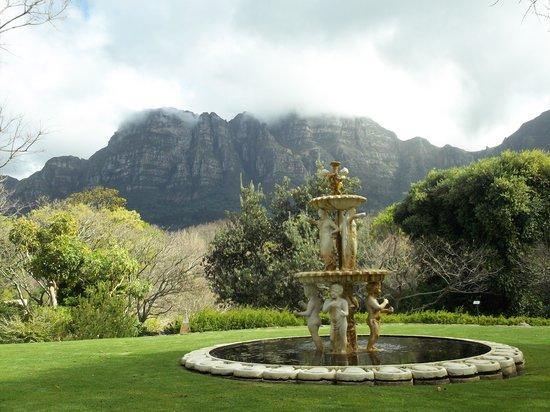 Vineyard Hotel: Garden view