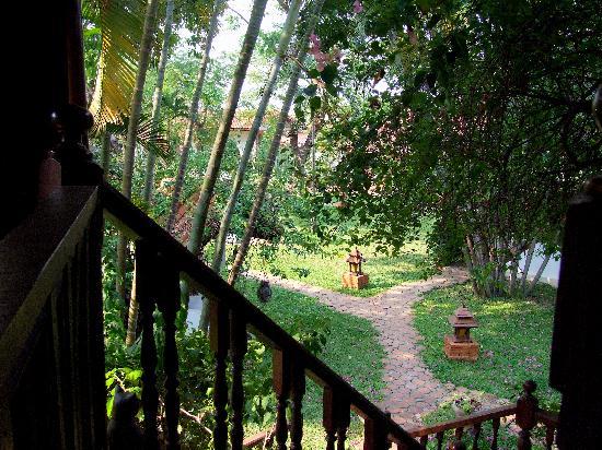 Secret Garden Chiang Mai: Blick in den Garten