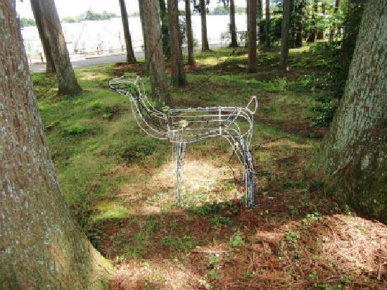 Senbonmatsu Ranch : 千本松温泉の前の動物