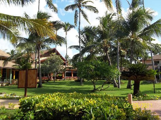 โรงแรมวิค อารีนา บลังกา: A view of the grounds