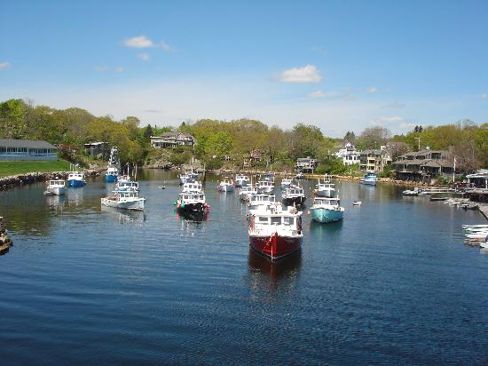 Stage Run by the Sea: Perkins Cove