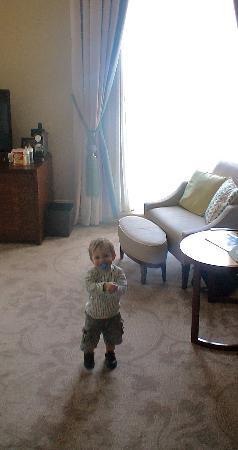 โรงแรมเซนต์แพนคราสเรเนซองส์ ลอนดอน: room