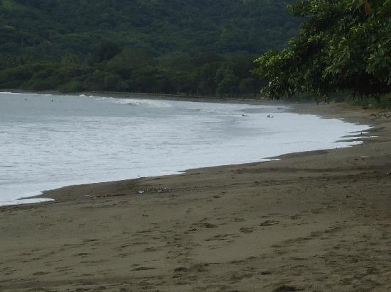 Bahia del Sol Beach Front Hotel & Suites: playa