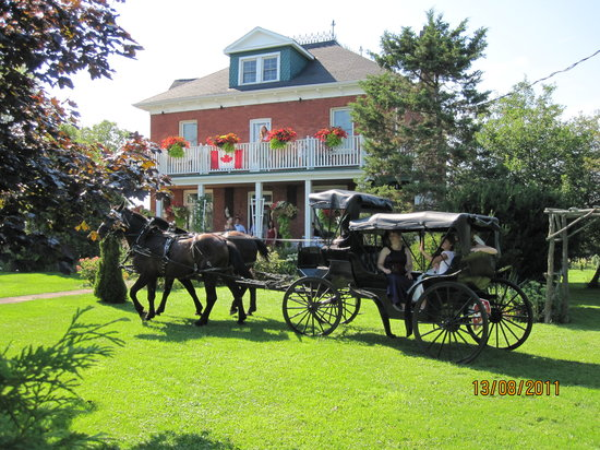Green Woods Inn: The bride departs....