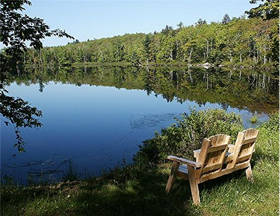 Relax, enjoying the view at Williams Pond Lodge