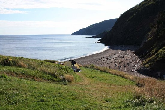 Meat Cove campground tent site
