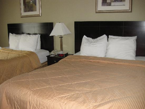 Comfort Inn Toms River: Double Bed