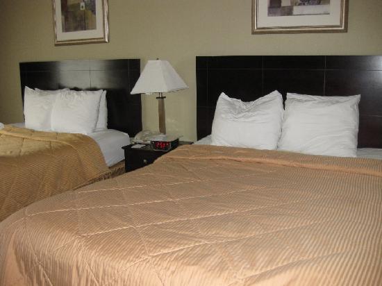 湯姆斯河凱富飯店張圖片