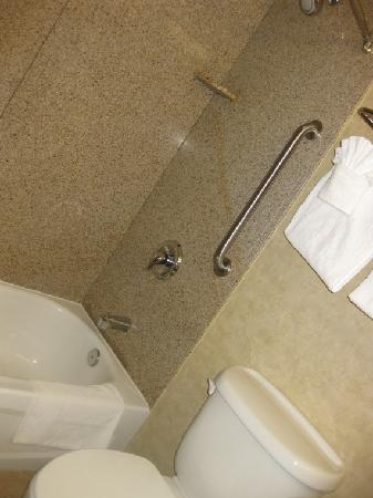 Comfort Inn Toms River: Clean Shower