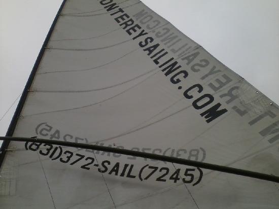 Monterey Bay Sailing: the sail