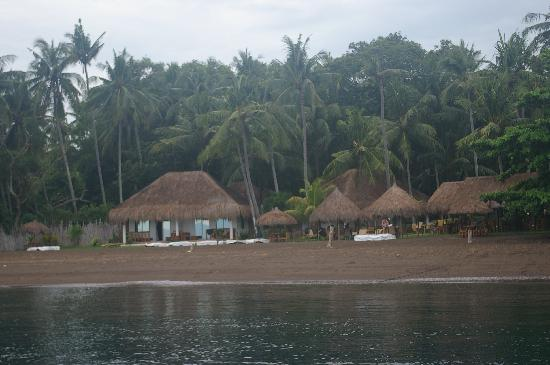 Pura Vida Beach & Dive Resort: resort from the sea