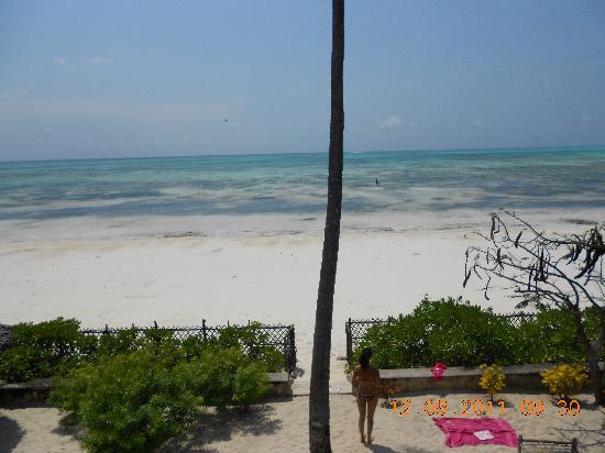 Villa Biba : A view of the beach