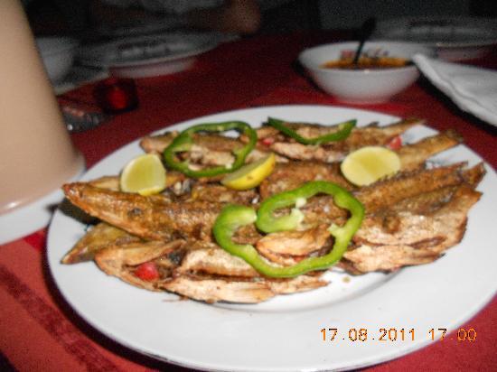 Villa Biba : Catch of the day