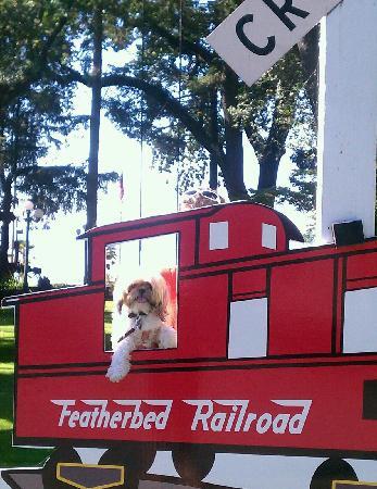 Featherbed Railroad Bed & Breakfast Resort: Lulu enjoying all of the fun activities.