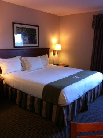 Holiday Inn Express Vadnais Heights: King Bed