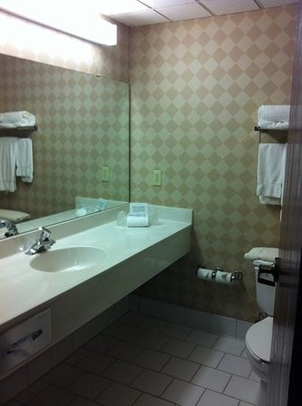 Holiday Inn Express Vadnais Heights: Bathroom