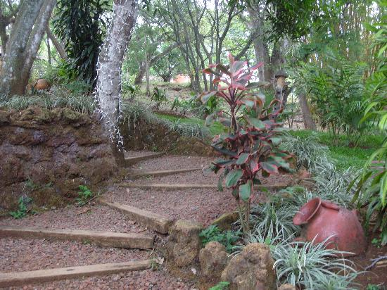 Villa San Ignacio: NATURE TRAILS