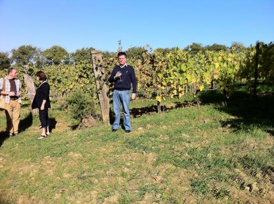Tuscan Wine Tour by Italy and Wine: fantastic day