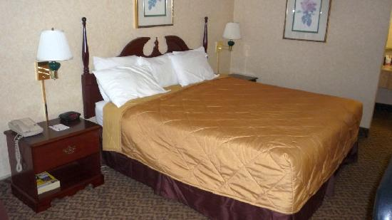 Ramada Pikesville/Baltimore North: Room 236
