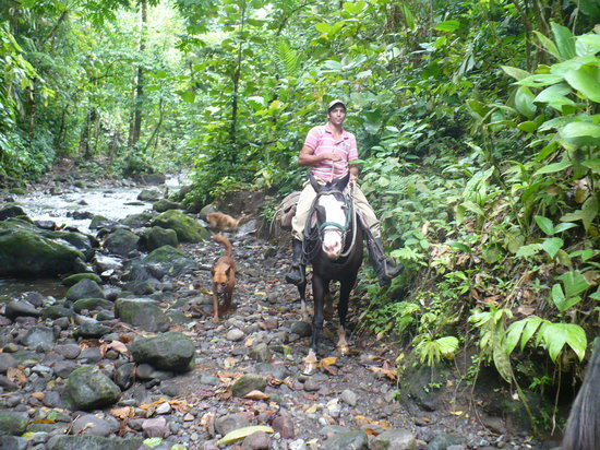 La Fortuna de San Carlos, Costa Rica: Our guide and the dogs on the river crossing