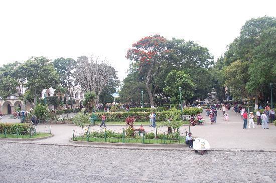 La Plaza (Parque Central): Parque Central