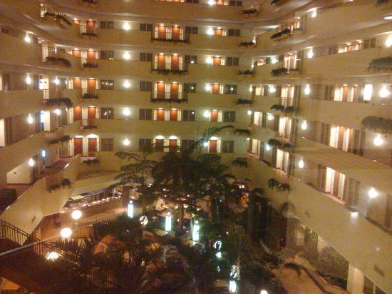 beautiful views from - Embassy Suites Hotel Usf Busch Gardens