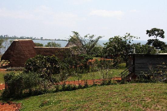 Ngamba Island Chimpanzee Sanctuary: A view of the Island